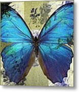 Butterfly Art - S01bfr02 Metal Print by Variance Collections