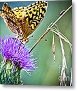 Butterfly Beauty And Little Friend Metal Print