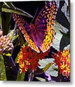 Butterfly Don't Fly Away Metal Print