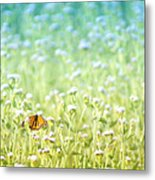 Butterfly Dreams Metal Print by Holly Kempe