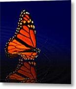 Butterfly Floats Metal Print