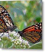 Butterfly Garden - Monarchs 17 Metal Print