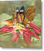 Butterfly Gathering Metal Print