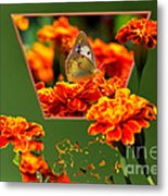 Butterfly In A Sea Of Orange Floral 02 Metal Print
