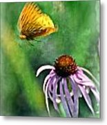 Butterfly In Flight Metal Print by Marty Koch