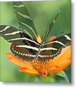 Butterfly In Motion #1967 Metal Print