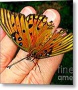 Butterfly Landing Metal Print