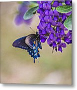 Butterfly Mountain Metal Print