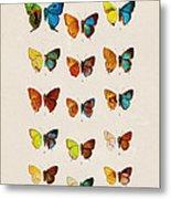 Butterfly Plate Metal Print