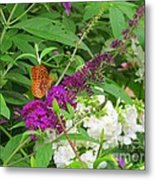 Butterfly Surprise Metal Print