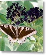Butterfly - Swallowtail - Photopower 141 Metal Print