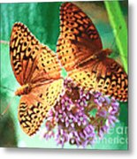Butterfly Twins Metal Print
