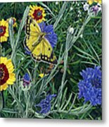 Butterfly Wildflowers Spring Time Garden Floral Oil Painting Green Yellow Metal Print
