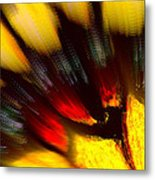 Butterfly Wing Pastel Metal Print