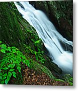 Buttermilk Falls Gorge Metal Print