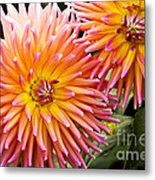 Buy Me Flowers Metal Print