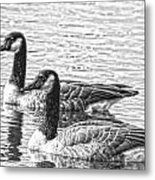 Bw Hdr Geese On The Pond I Metal Print