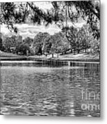 Bw Lake Views  Metal Print by Chuck Kuhn
