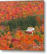 By Autumn Surrounded Metal Print