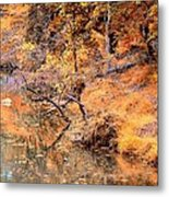 By The Bank Of The Golden Forest Metal Print