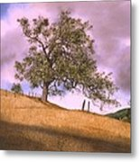 By The Big Oak Metal Print