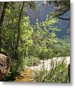 By The Emerald Pools - Zion Np Metal Print