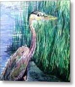 By The Swamp Metal Print