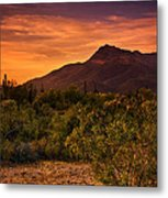 By The Light Of The Sunset Metal Print