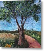By The Path Metal Print