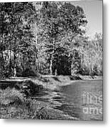 Chesapeake And Ohio Canal And Towpath Metal Print