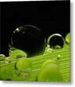 C Ribet Orbscape Water Soul Metal Print by C Ribet