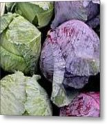 Cabbage Friends Metal Print