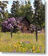 Cabin And Wildflowers Metal Print
