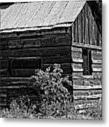 Cabin In The Wilderness Metal Print
