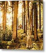 Cabin In The Woods Metal Print