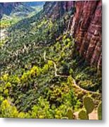 Cacti View Of Zion Metal Print