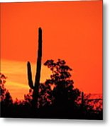Cactus Against A Blazing Sunset Metal Print