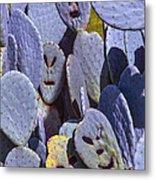 Cactus Faces Metal Print