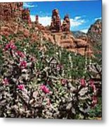 Cactus Flowers And Red Rocks Metal Print
