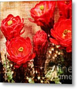 Cactus Flowers Metal Print by Julie Lueders