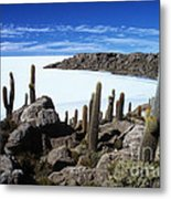 Cactus Forest And Salar De Uyuni Metal Print