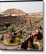 Cactus Paradise Metal Print