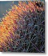 Cactus Rose Metal Print