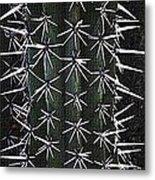 Cactus Spines Metal Print