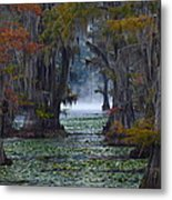 Caddo Lake Morning Metal Print