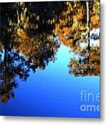 Caddo Lake Reflections Metal Print