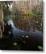 Caddo Lake, Texas's Largest Natural Lake Metal Print