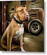 Caesar At Millers Chop Shop Metal Print