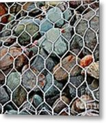 Caged By Barbara Griffin Metal Print