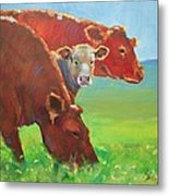 Calf And Cows Painting Metal Print